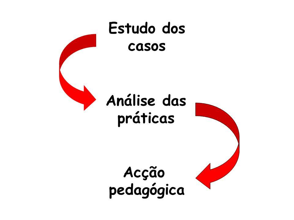 Estudo dos casos Análise das práticas Acção pedagógica