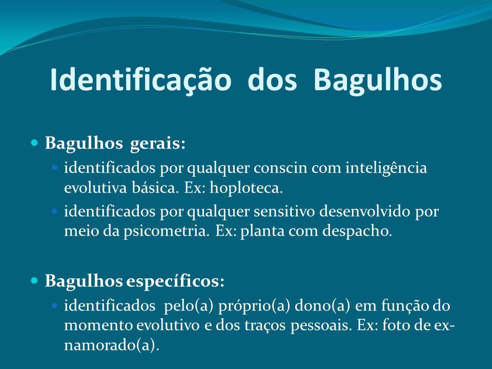 Identificação dos Bagulhos Bagulhos gerais: identificados por qualquer conscin com inteligência evolutiva básica. Ex: hoploteca. identificados por qua