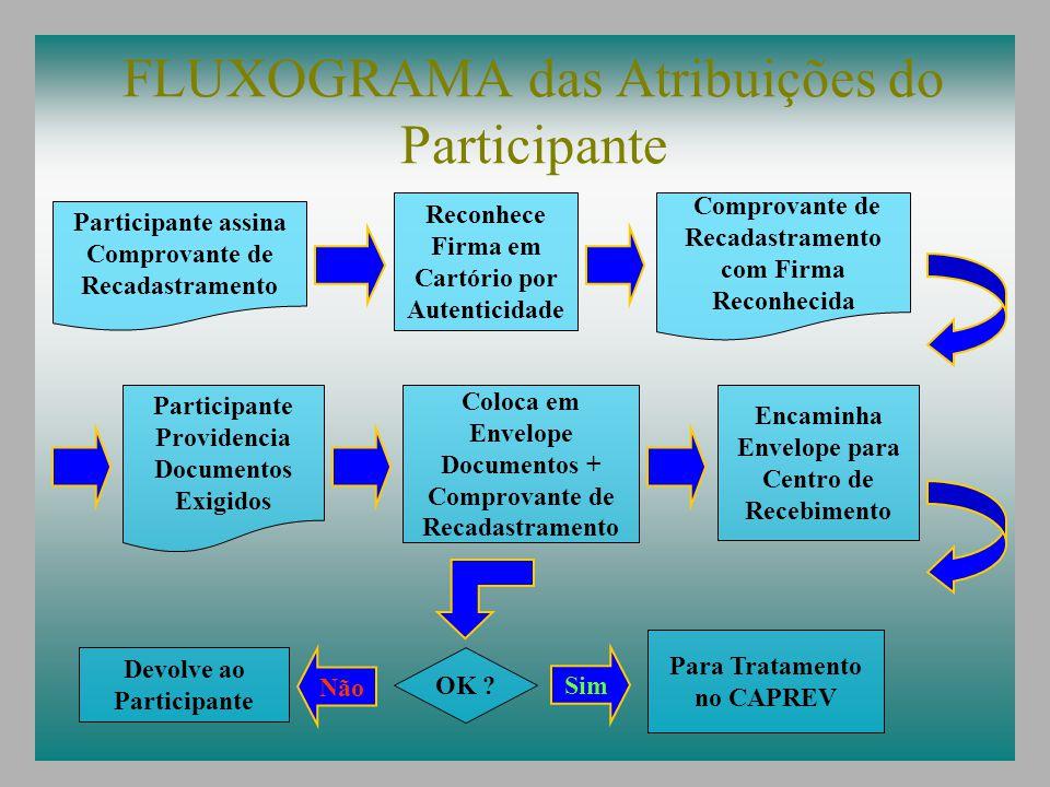 FLUXOGRAMA das Atribuições do Participante Participante assina Comprovante de Recadastramento Reconhece Firma em Cartório por Autenticidade Comprovant