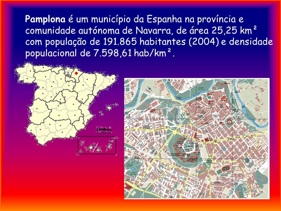 Pamplona é um município da Espanha na província e comunidade autónoma de Navarra, de área 25,25 km² com população de 191.865 habitantes (2004) e densidade populacional de 7.598,61 hab/km².