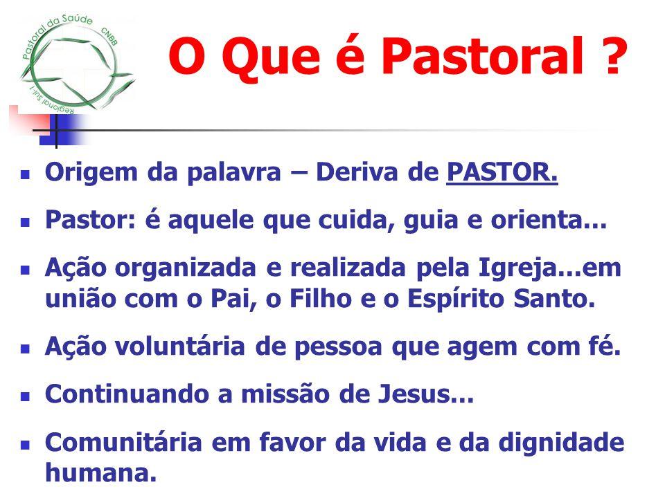 O Que é Pastoral ? Origem da palavra – Deriva de PASTOR. Pastor: é aquele que cuida, guia e orienta... Ação organizada e realizada pela Igreja...em un