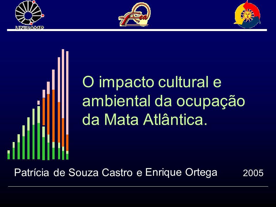 O impacto cultural e ambiental da ocupação da Mata Atlântica.