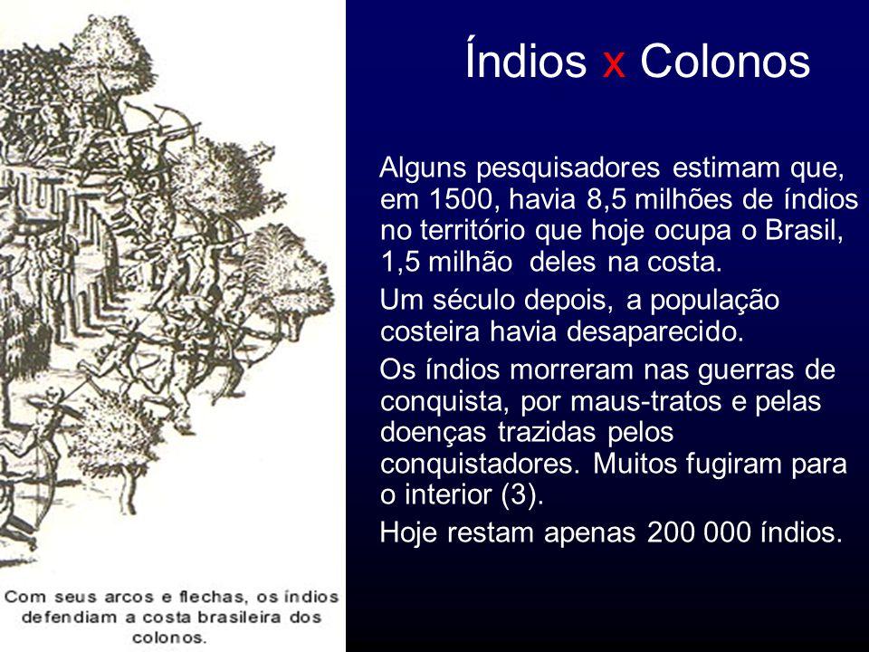 Índios x Colonos Alguns pesquisadores estimam que, em 1500, havia 8,5 milhões de índios no território que hoje ocupa o Brasil, 1,5 milhão deles na costa.