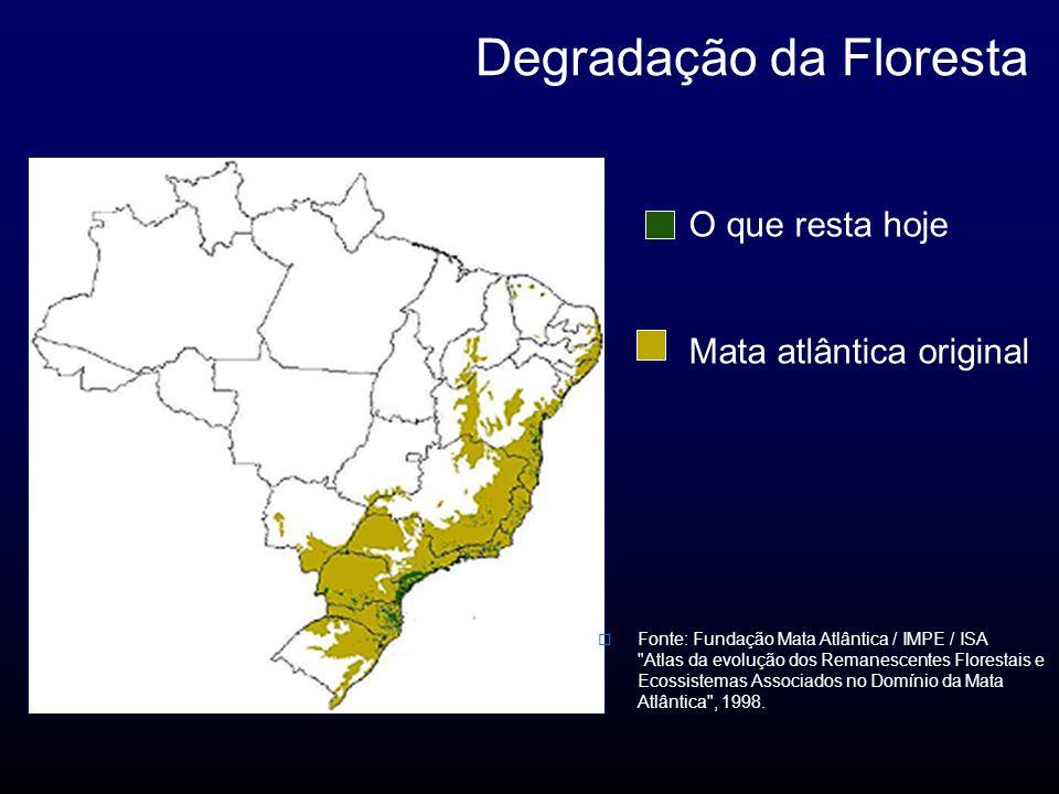 O que resta hoje Mata atlântica original Degradação da Floresta Fonte: Fundação Mata Atlântica / IMPE / ISA Atlas da evolução dos Remanescentes Florestais e Ecossistemas Associados no Domínio da Mata Atlântica , 1998.