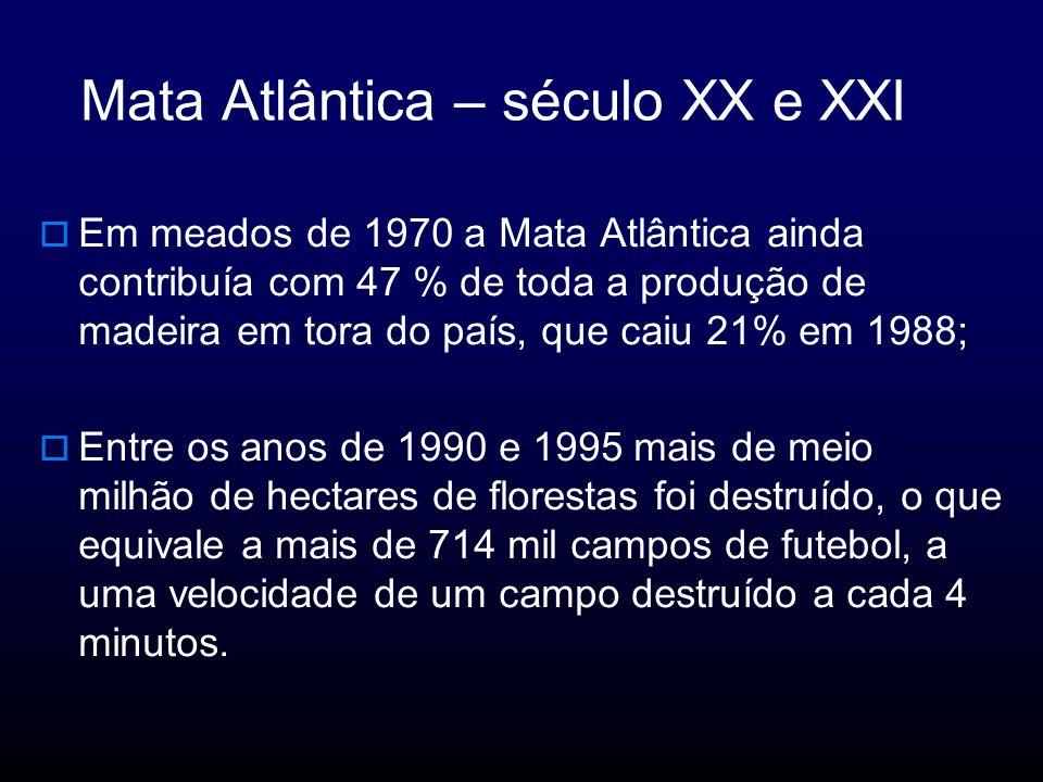 Mata Atlântica – século XX e XXI Em meados de 1970 a Mata Atlântica ainda contribuía com 47 % de toda a produção de madeira em tora do país, que caiu 21% em 1988; Entre os anos de 1990 e 1995 mais de meio milhão de hectares de florestas foi destruído, o que equivale a mais de 714 mil campos de futebol, a uma velocidade de um campo destruído a cada 4 minutos.