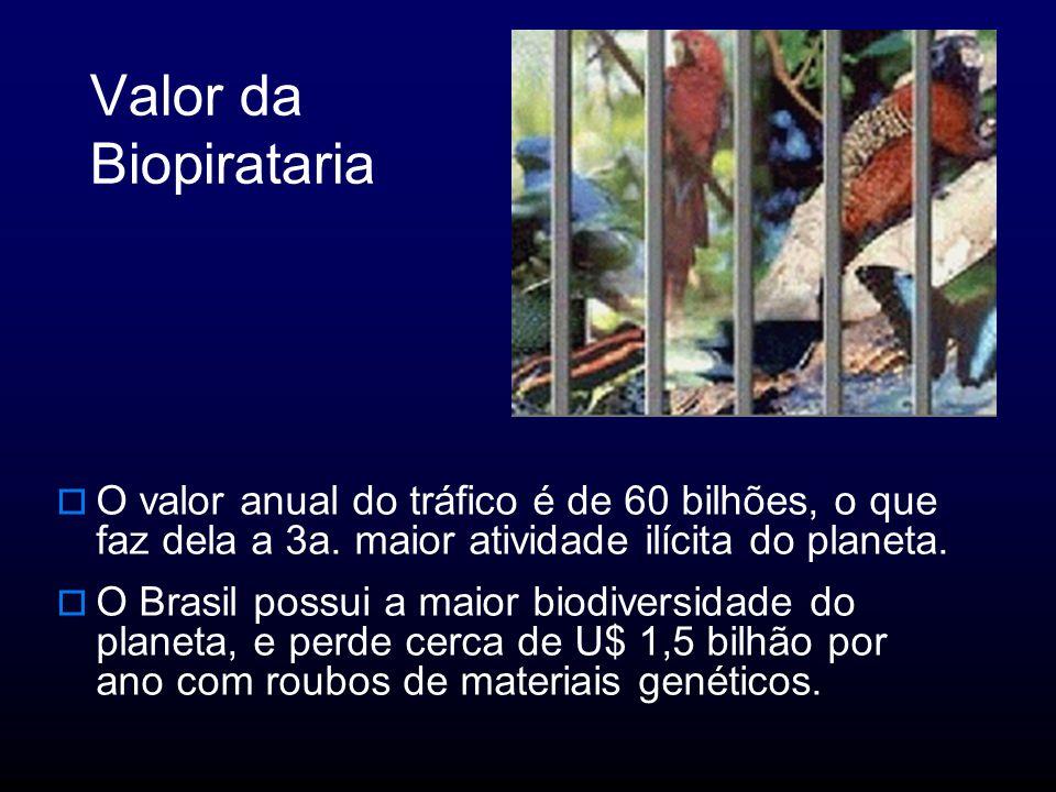 Valor da Biopirataria O valor anual do tráfico é de 60 bilhões, o que faz dela a 3a.