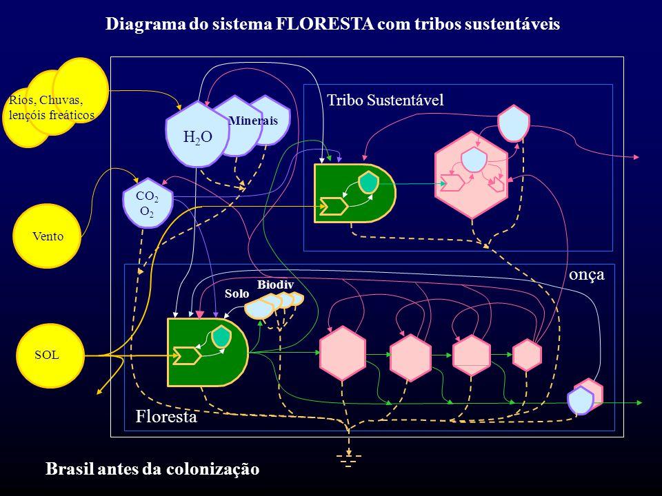 Floresta Solo Biodiv H2OH2O CO 2 O 2 SOL Vento Rios, Chuvas, lençóis freáticos Diagrama do sistema FLORESTA com tribos sustentáveis Tribo Sustentável Minerais Brasil antes da colonização onça