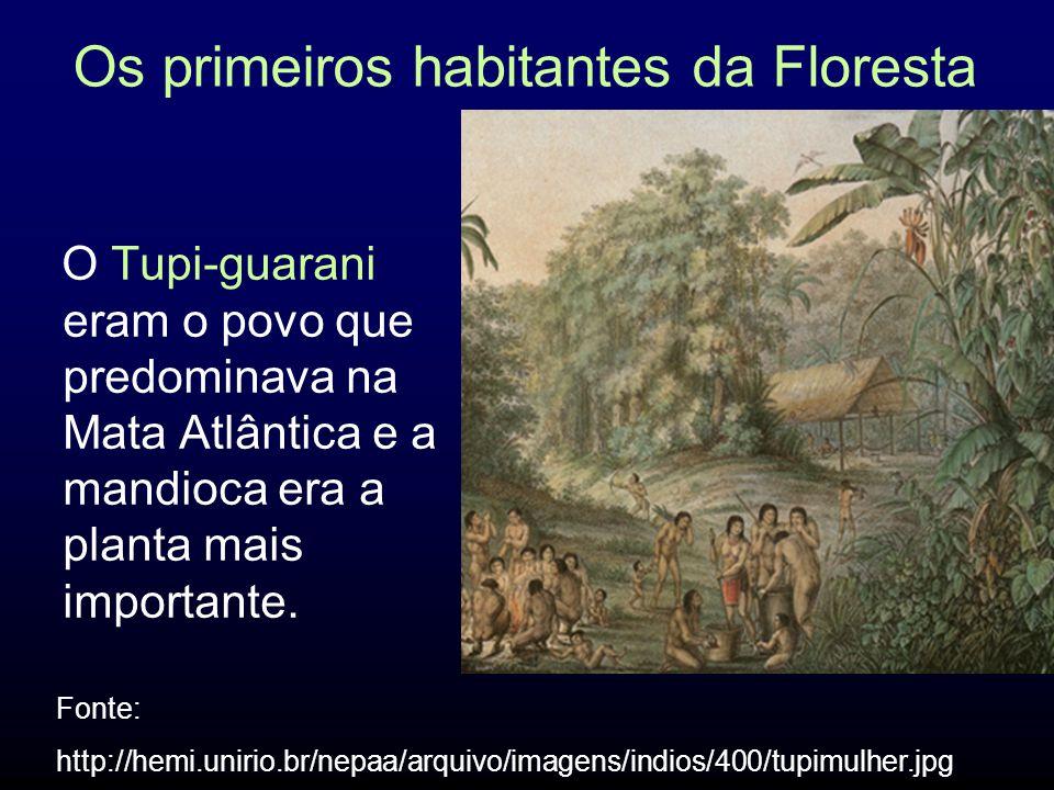 Índios x Colonos A escravização expunha as populações indígenas às epidemias.