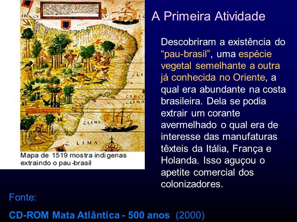 Monopólio do pau-brasil pela Coroa A primeira concessão foi outorgada em 1501 a Fernando de Noronha e mercadores judeus.