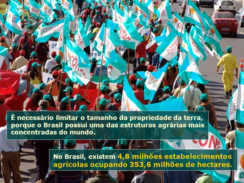 No Brasil, existem 4,8 milhões estabelecimentos agrícolas ocupando 353,6 milhões de hectares. É necessário limitar o tamanho da propriedade da terra,