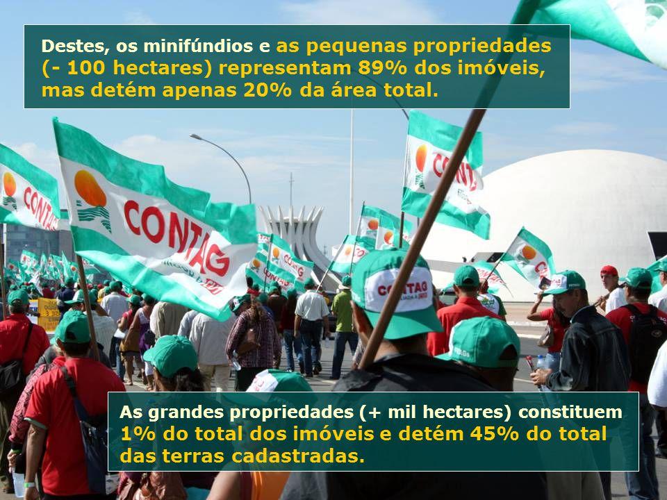 Destes, os minifúndios e as pequenas propriedades (- 100 hectares) representam 89% dos imóveis, mas detém apenas 20% da área total. As grandes proprie
