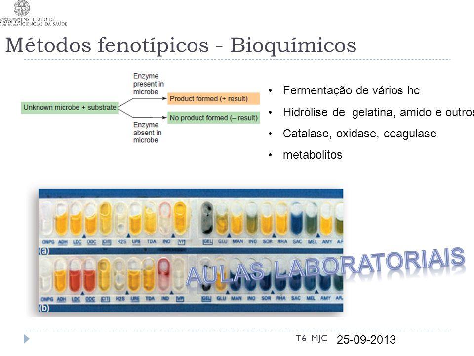 Métodos fenotípicos - Bioquímicos 25-09-2013 T6 MJC Fermentação de vários hc Hidrólise de gelatina, amido e outros Catalase, oxidase, coagulase metabo