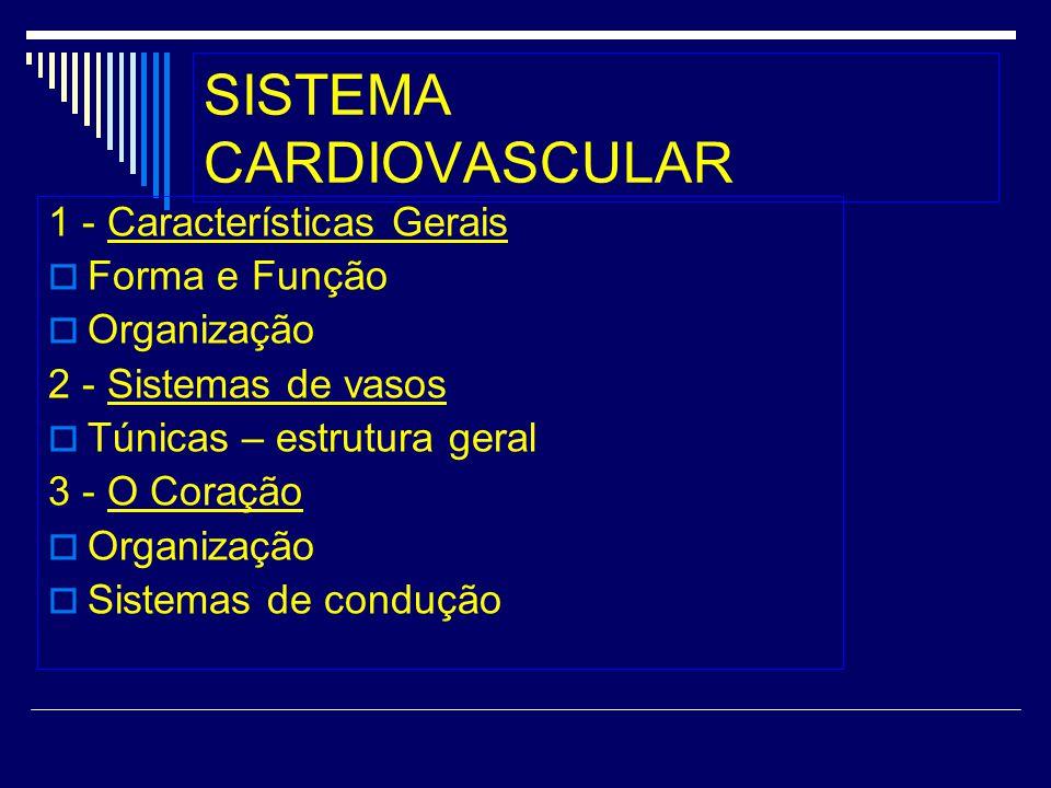 SISTEMA CARDIOVASCULAR 1 - Características Gerais Forma e Função Organização 2 - Sistemas de vasos Túnicas – estrutura geral 3 - O Coração Organização