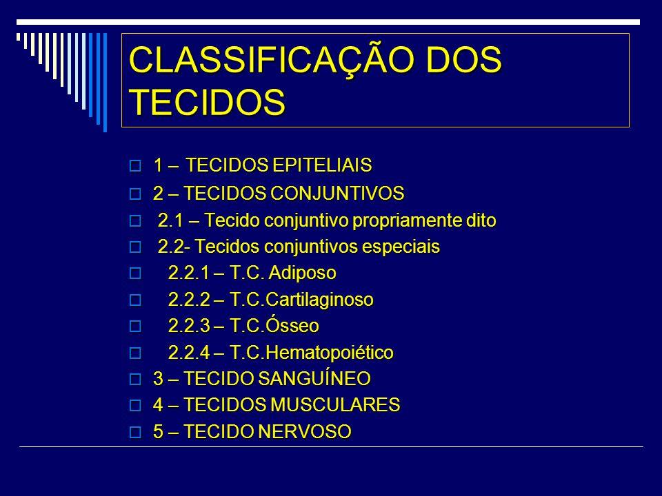 CLASSIFICAÇÃO DOS TECIDOS 1 – TECIDOS EPITELIAIS 1 – TECIDOS EPITELIAIS 2 – TECIDOS CONJUNTIVOS 2 – TECIDOS CONJUNTIVOS 2.1 – Tecido conjuntivo propri