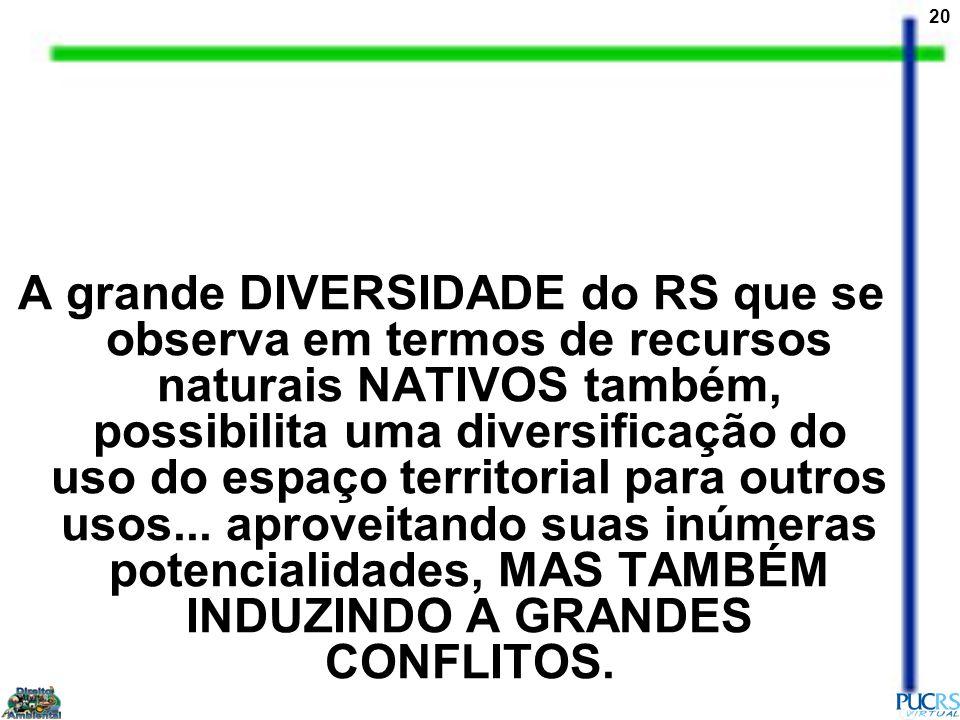 20 A grande DIVERSIDADE do RS que se observa em termos de recursos naturais NATIVOS também, possibilita uma diversificação do uso do espaço territoria