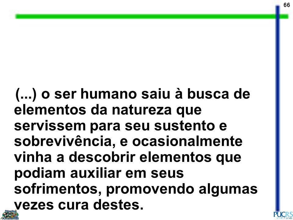 66 (...) o ser humano saiu à busca de elementos da natureza que servissem para seu sustento e sobrevivência, e ocasionalmente vinha a descobrir elemen