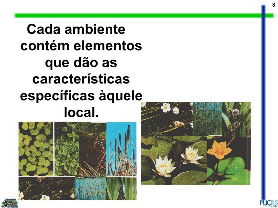 8 Cada ambiente contém elementos que dão as características específicas àquele local.