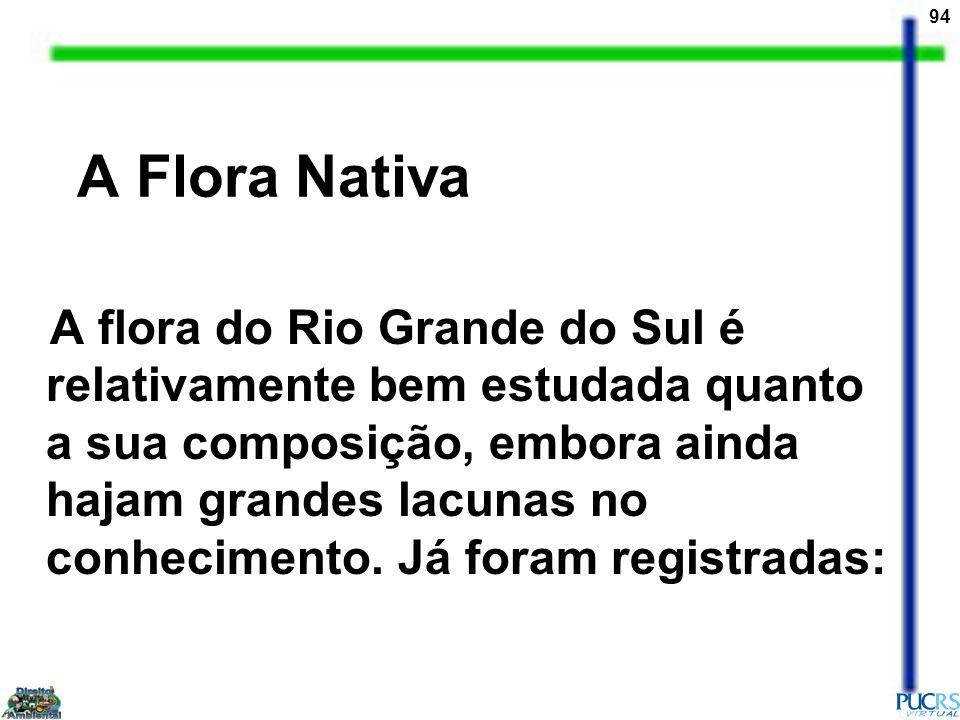 94 A Flora Nativa A flora do Rio Grande do Sul é relativamente bem estudada quanto a sua composição, embora ainda hajam grandes lacunas no conheciment