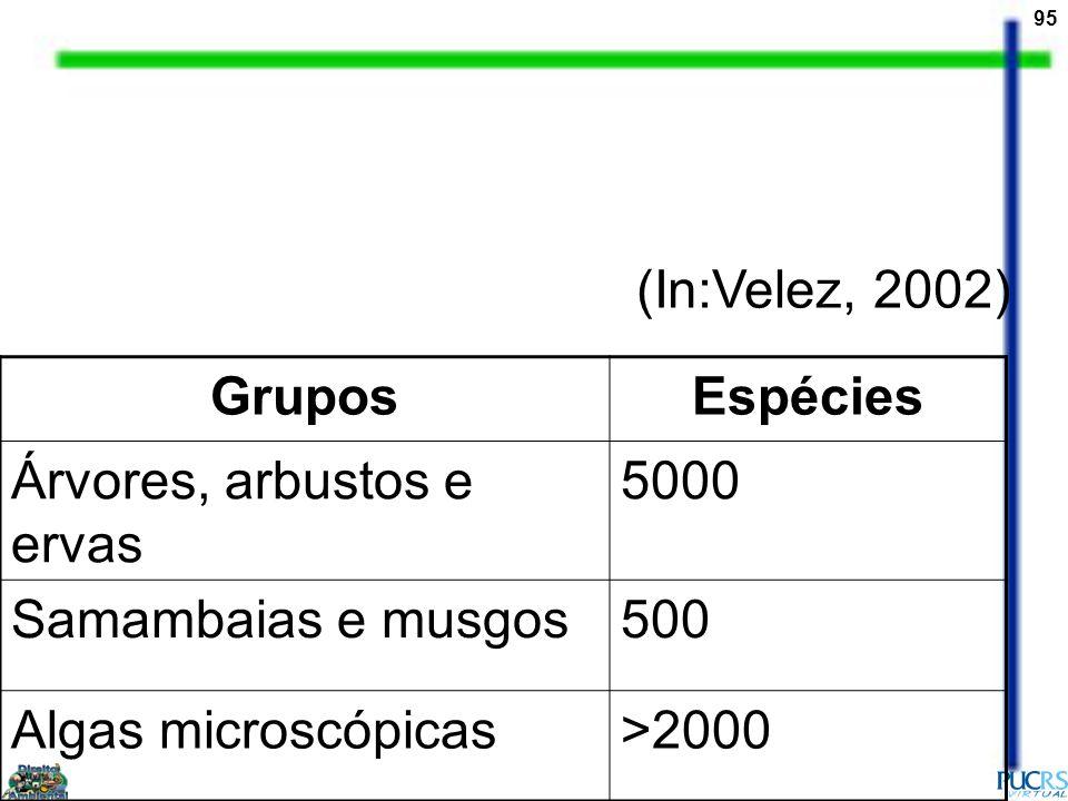 95 GruposEspécies Árvores, arbustos e ervas 5000 Samambaias e musgos500 Algas microscópicas>2000 (In:Velez, 2002)
