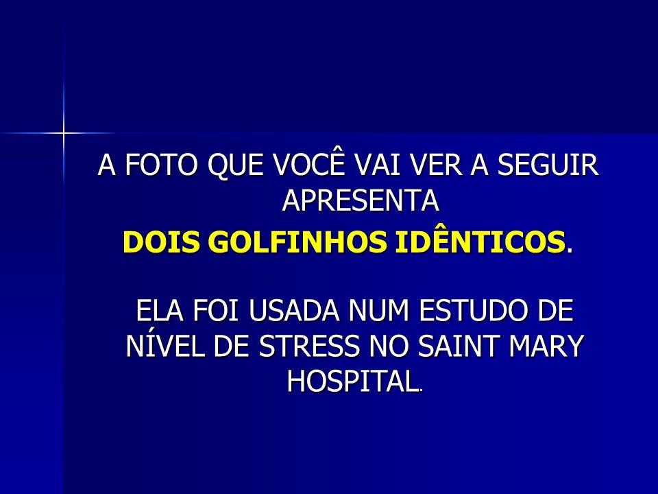 A FOTO QUE VOCÊ VAI VER A SEGUIR APRESENTA DOIS GOLFINHOS IDÊNTICOS. ELA FOI USADA NUM ESTUDO DE NÍVEL DE STRESS NO SAINT MARY HOSPITAL.