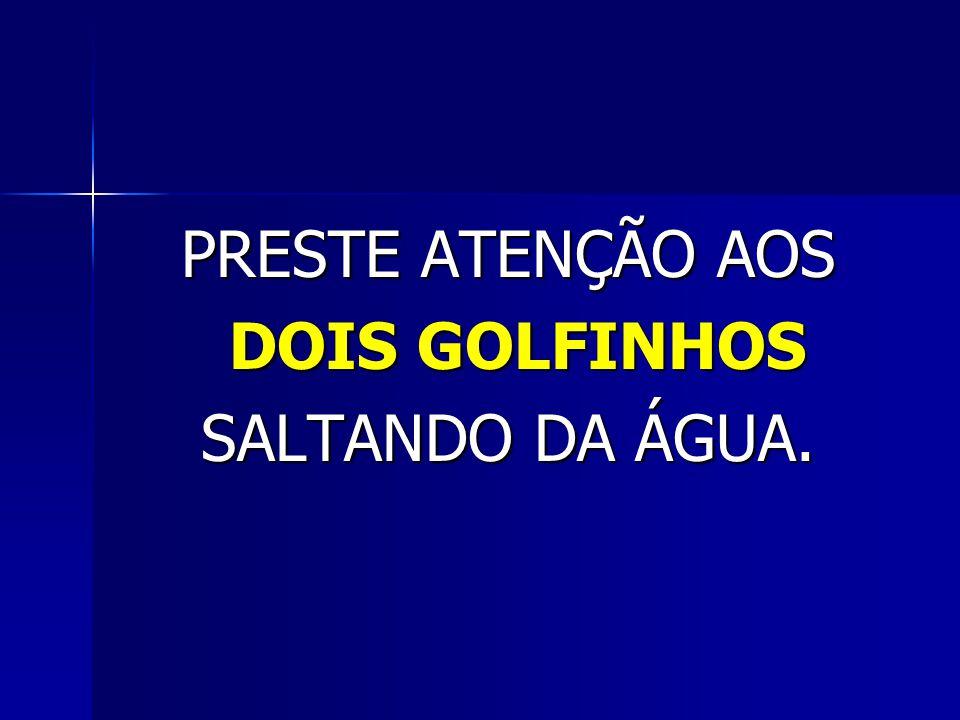 PRESTE ATENÇÃO AOS DOIS GOLFINHOS DOIS GOLFINHOS SALTANDO DA ÁGUA.