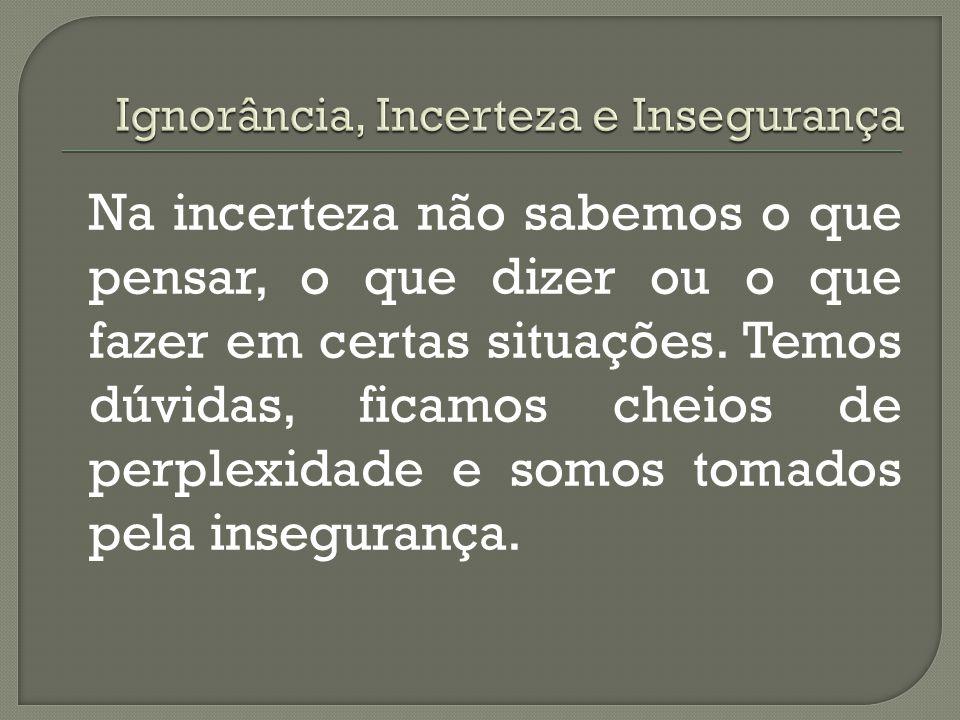 A incerteza é diferente da ignorância porque, na incerteza, descobrimos que somos ignorantes, que nossas crenças e opiniões parecem não dar conta da r