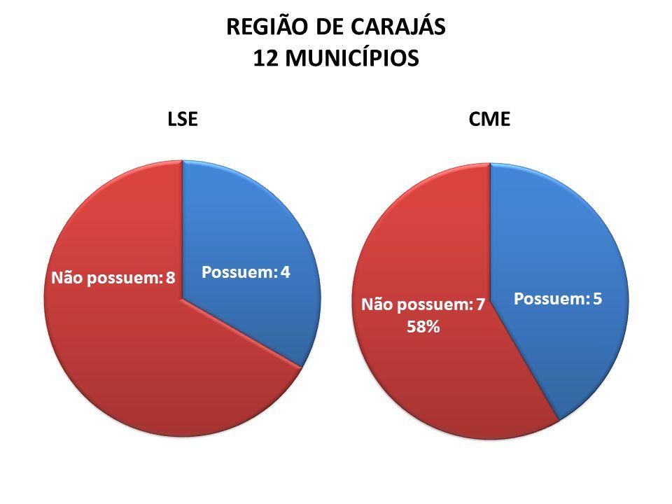 REGIÃO DE CARAJÁS 12 MUNICÍPIOS LSECME