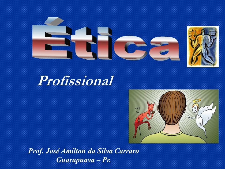 Prof. José Amilton da Silva Carraro Guarapuava – Pr. Profissional