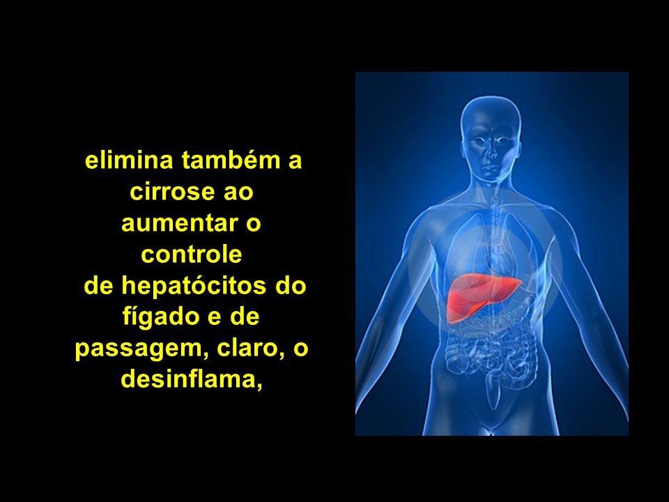 elimina também a cirrose ao aumentar o controle de hepatócitos do fígado e de passagem, claro, o desinflama,