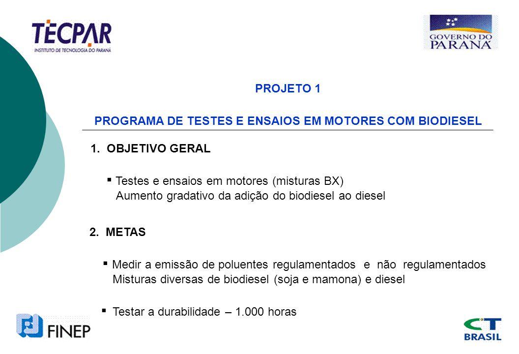 PROJETO 2 PROGRAMA DE IMPLANTAÇÃO DO PROBIODIESEL 1.