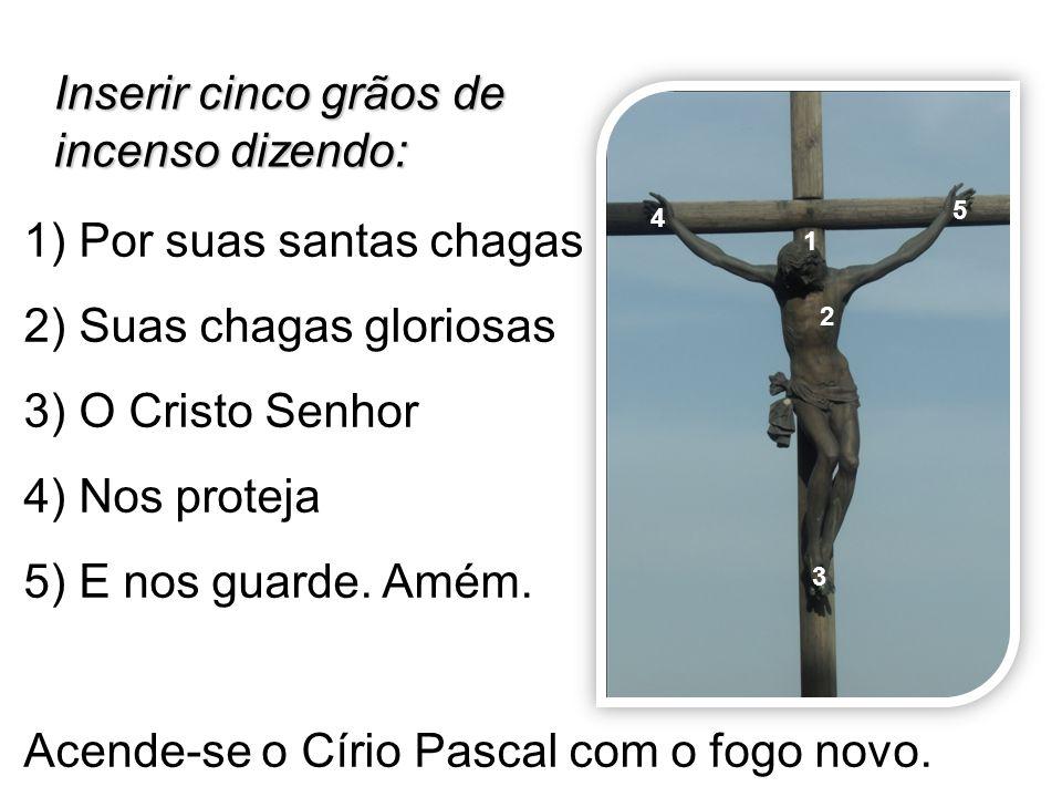1) Por suas santas chagas 2) Suas chagas gloriosas 3) O Cristo Senhor 4) Nos proteja 5) E nos guarde. Amém. Acende-se o Círio Pascal com o fogo novo.