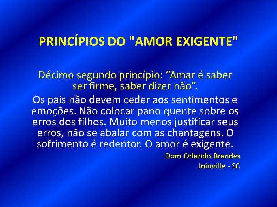 PRINCÍPIOS DO AMOR EXIGENTE Décimo primeiro princípio: A necessidade da disciplina.