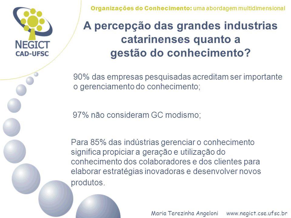 Maria Terezinha Angeloni www.negict.cse.ufsc.br Organizações do Conhecimento: uma abordagem multidimensional A percepção das grandes industrias catari