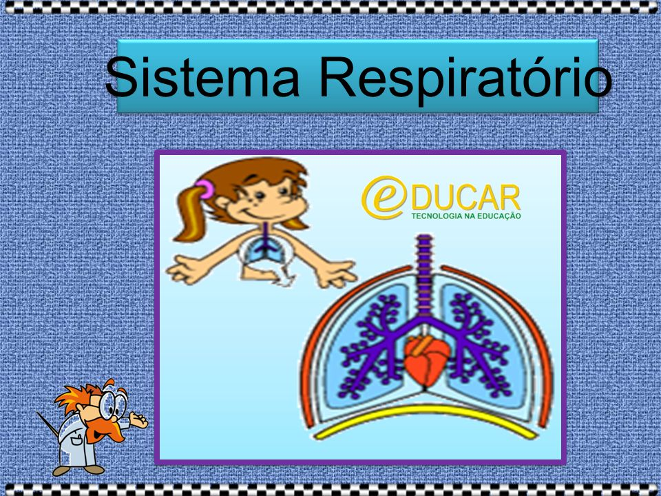Turminha, vamos clicar no link abaixo e nos deliciar em uma aula animada sobre o sistema respiratório.
