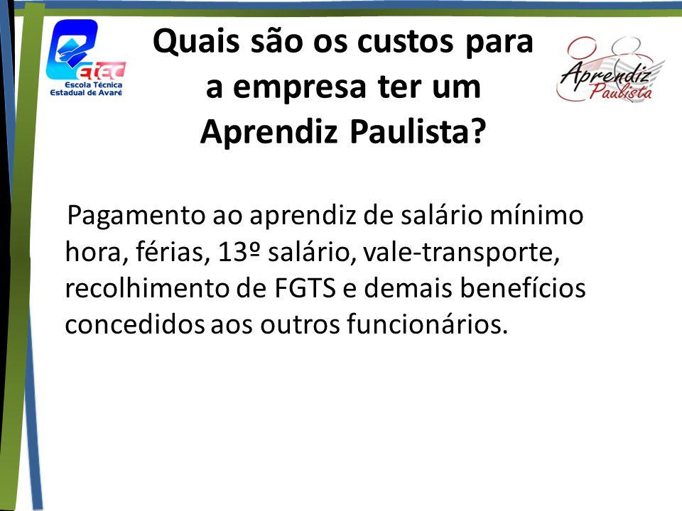 Quais são os custos para a empresa ter um Aprendiz Paulista? Pagamento ao aprendiz de salário mínimo hora, férias, 13º salário, vale-transporte, recol