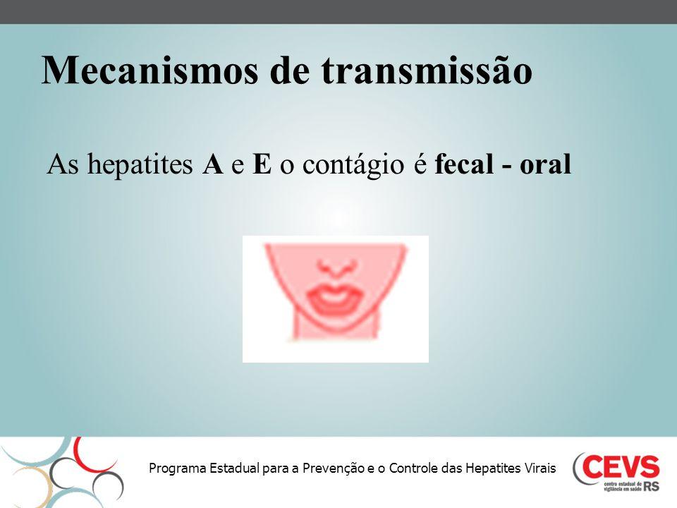 Programa Estadual para a Prevenção e o Controle das Hepatites Virais Mecanismos de transmissão As hepatites A e E o contágio é fecal - oral