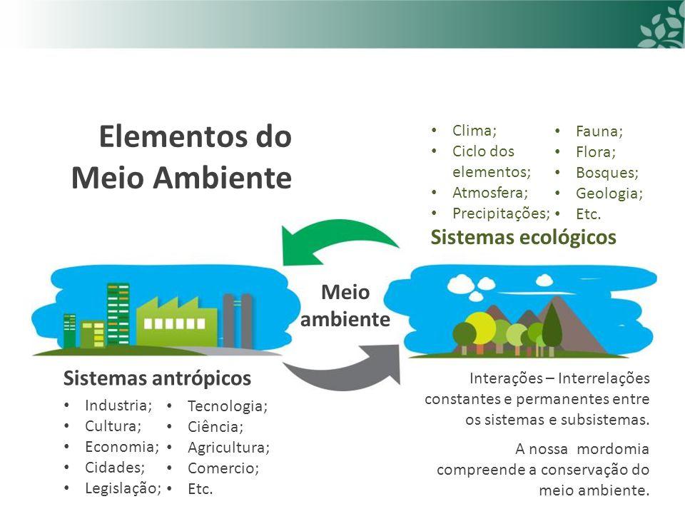 Elementos do Meio Ambiente Sistemas antrópicos Sistemas ecológicos Meio ambiente Industria; Cultura; Economia; Cidades; Legislação; Tecnologia; Ciência; Agricultura; Comercio; Etc.