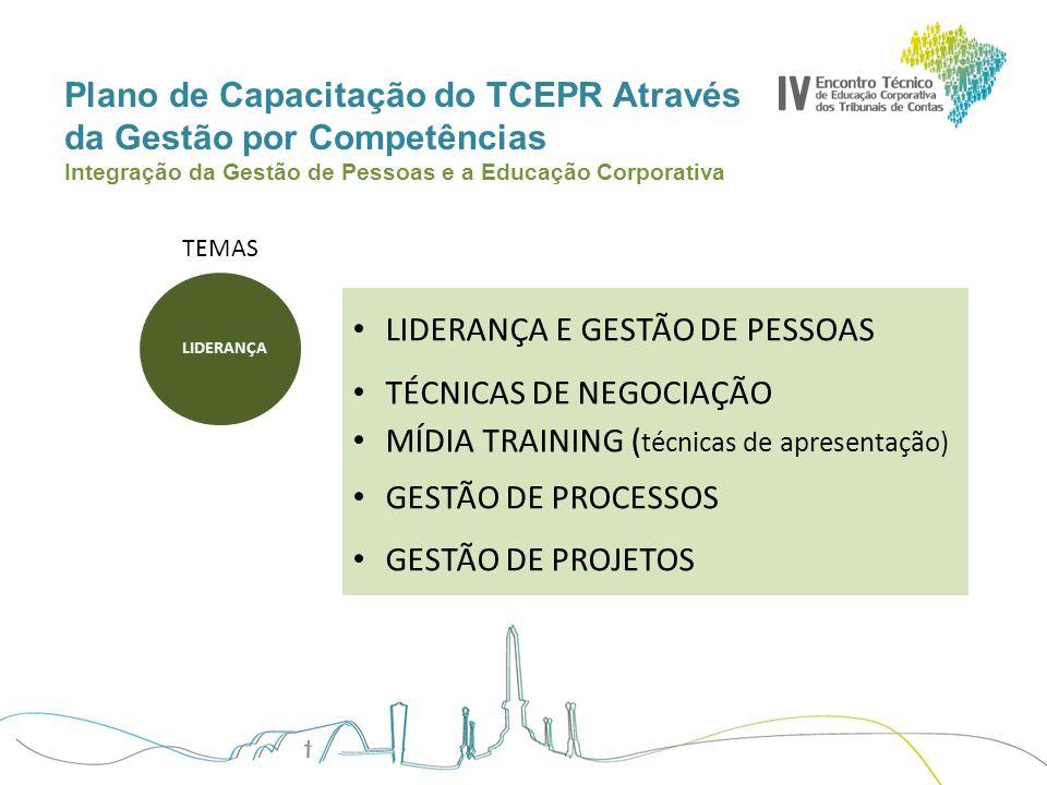 Plano de Capacitação do TCEPR Através da Gestão por Competências Integração da Gestão de Pessoas e a Educação Corporativa TEMAS Normas de Auditoria Curso de Formação em Auditoria ( Planejamento/Papeis de trabalho/Relatórios ) Auditoria Operacional Contabilidade Pública Planejamento e Orçamento LDO-LOA-PPA 2.