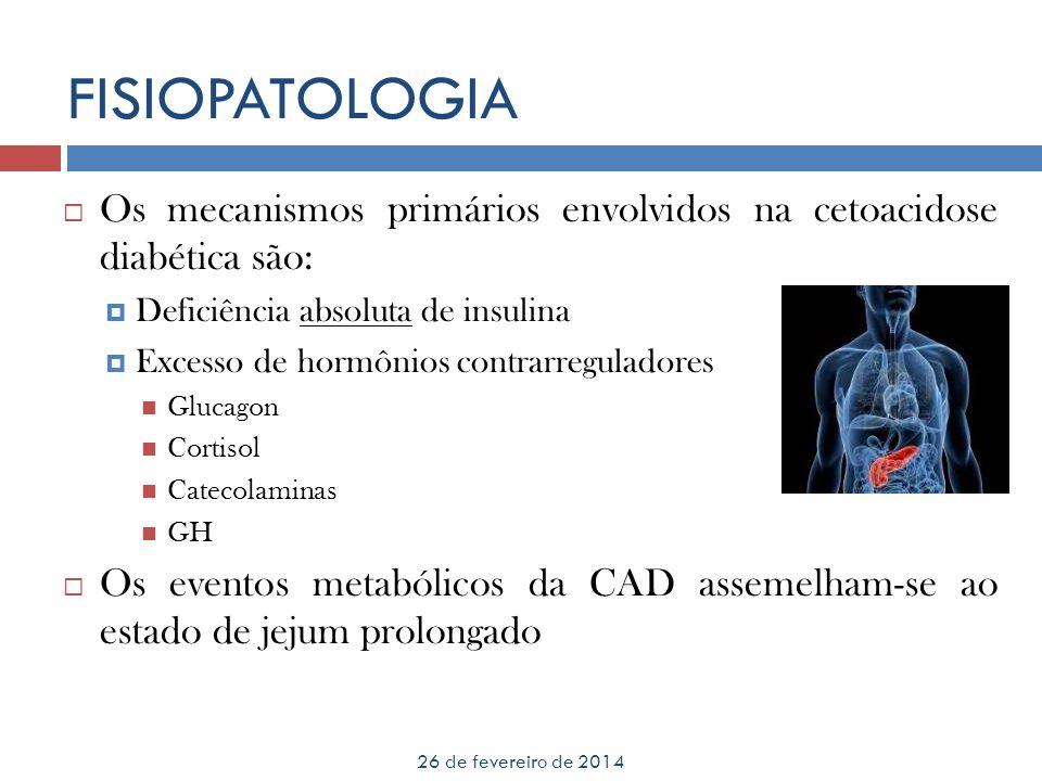 FISIOPATOLOGIA 26 de fevereiro de 2014 Os mecanismos primários envolvidos na cetoacidose diabética são: Deficiência absoluta de insulina Excesso de ho