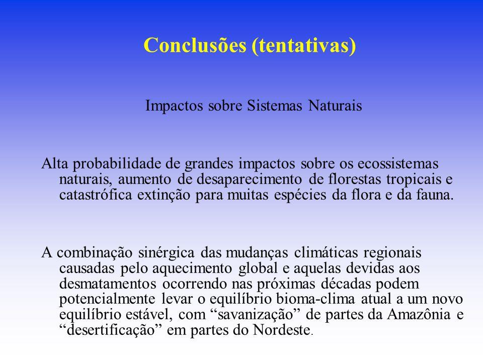 Conclusões (tentativas) Impactos sobre Sistemas Naturais Alta probabilidade de grandes impactos sobre os ecossistemas naturais, aumento de desaparecim