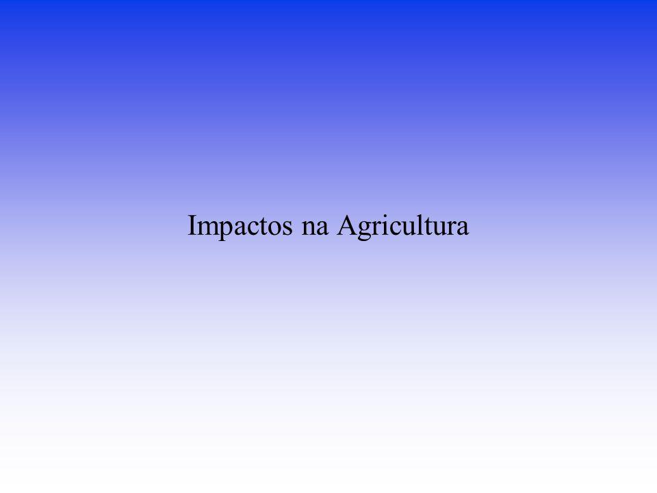Impactos na Agricultura