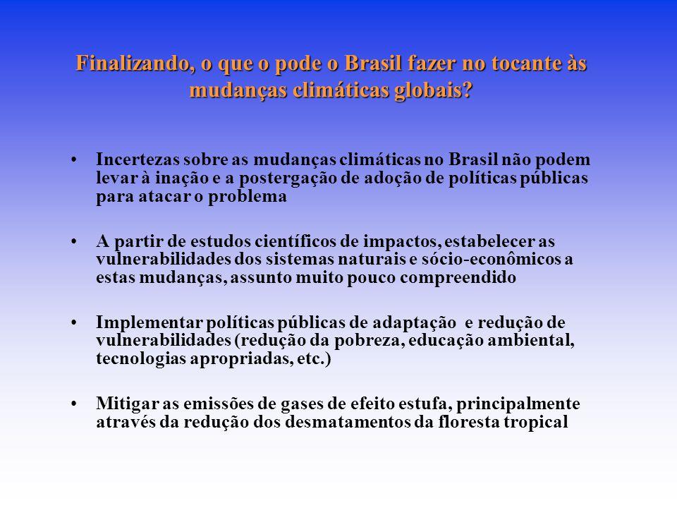 Finalizando, o que o pode o Brasil fazer no tocante às mudanças climáticas globais? Incertezas sobre as mudanças climáticas no Brasil não podem levar
