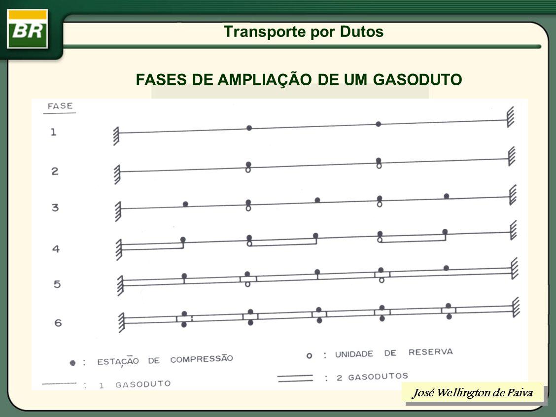 Transporte por Dutos ESCOLHA DO DIÂMETRO DE UM DUTO José Wellington de Paiva