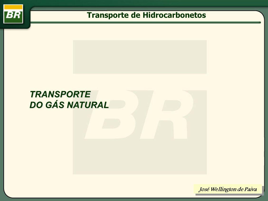 Transporte por Dutos FASES DE AMPLIAÇÃO DE UM GASODUTO José Wellington de Paiva