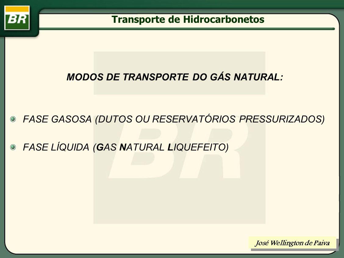 Transporte de Hidrocarbonetos TRANSPORTE DO GÁS NATURAL José Wellington de Paiva
