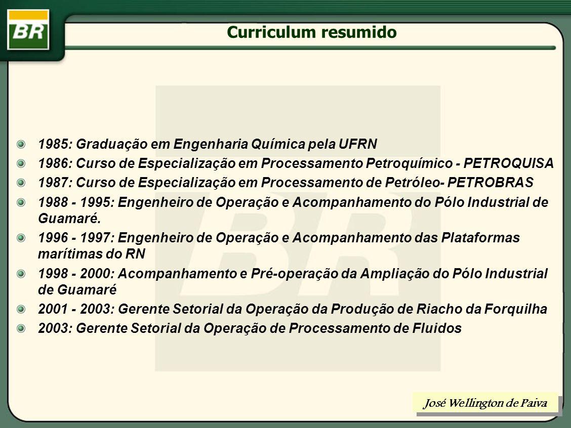 José Wellington de Paiva Gerente Setorial da Operação de Processamento de Fluidos abril/2005 UMA VISÃO INTEGRADA DO PROCESSAMENTO DE HIDROCARBONETOS José Wellington de Paiva