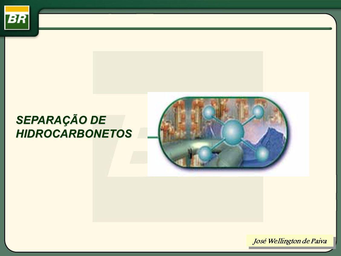 ROTEIRO: CONDICIONAMENTO PARA TRANSPORTE DE HCS SEPARAÇÃO DE HIDROCARBONETOS REFINO DE PETRÓLEO TRATAMENTO DE GÁS PROCESSAMENTO DE GÁS José Wellington de Paiva