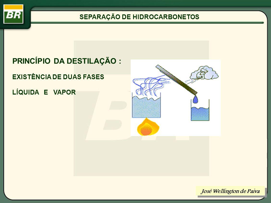 SEPARAÇÃO DE HIDROCARBONETOS José Wellington de Paiva