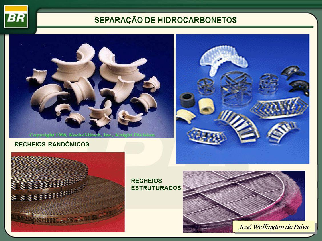 SEPARAÇÃO DE HIDROCARBONETOS DISPOSITIVOS DE CONTATO LÍQUIDO-VAPOR José Wellington de Paiva
