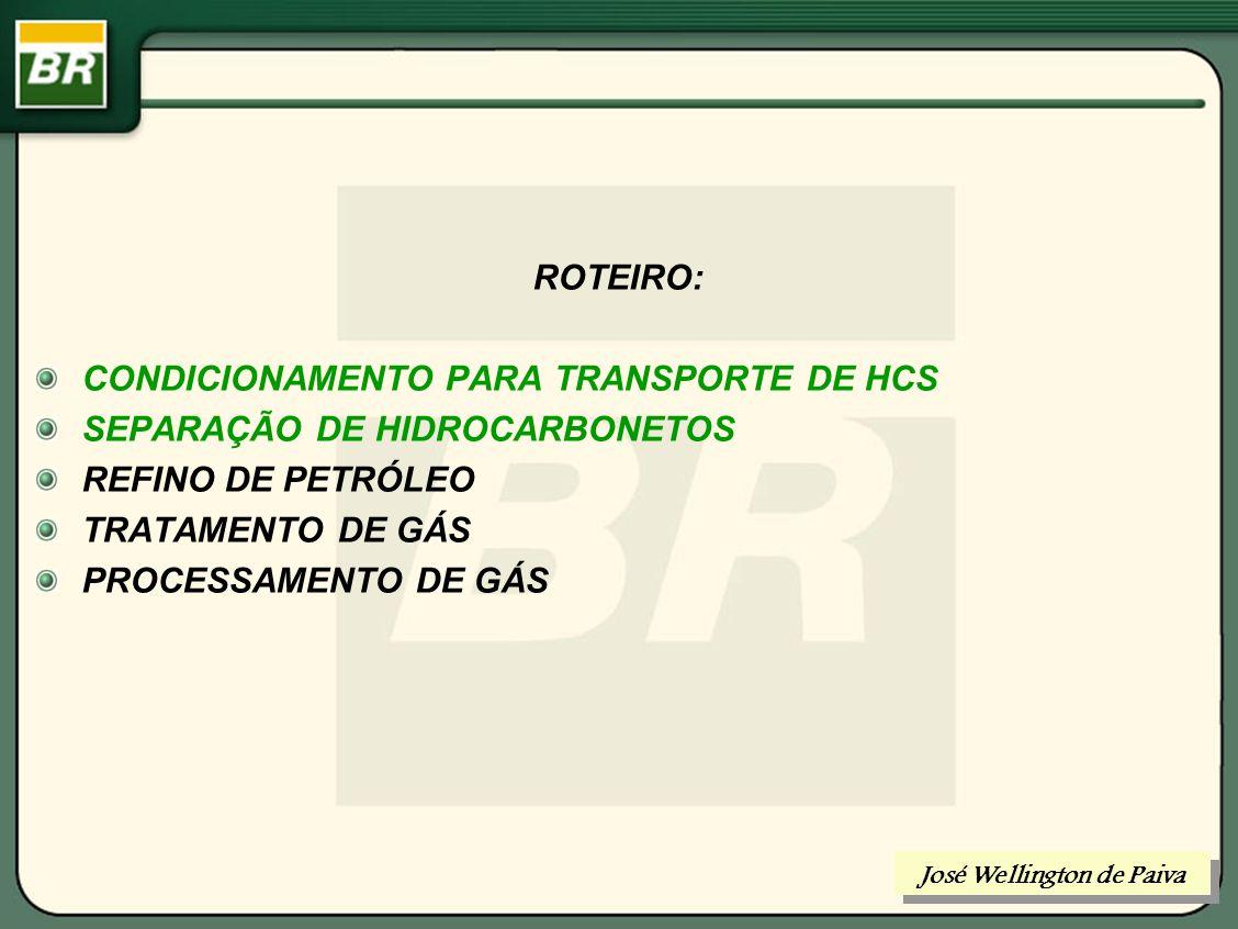 SEPARAÇÃO DE HIDROCARBONETOS RECHEIOS ESTRUTURADOS RECHEIOS RANDÔMICOS José Wellington de Paiva